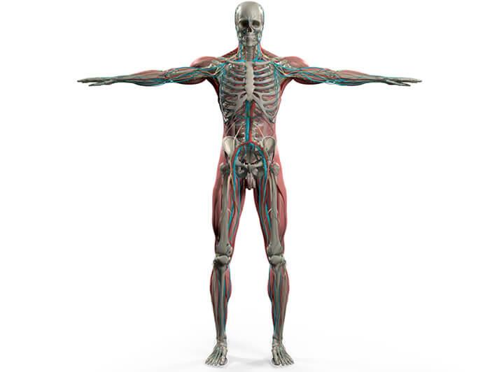 Alex Szabo Osteopathy